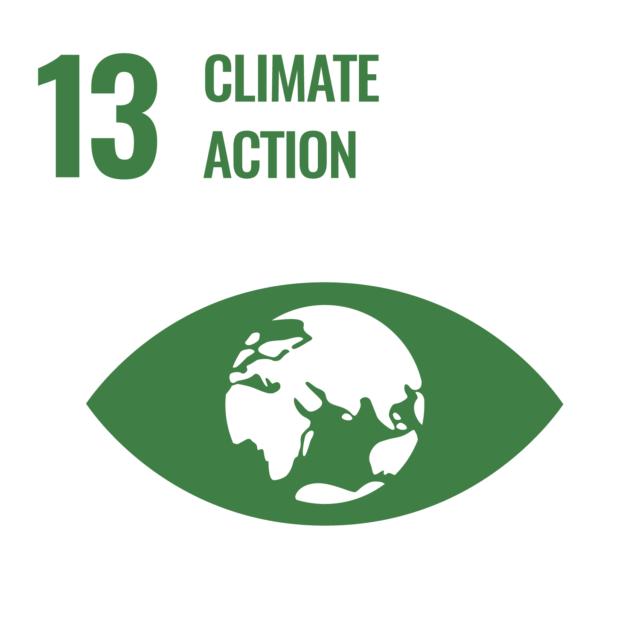 AMAATI SDG 1